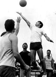 שאול כדורסל