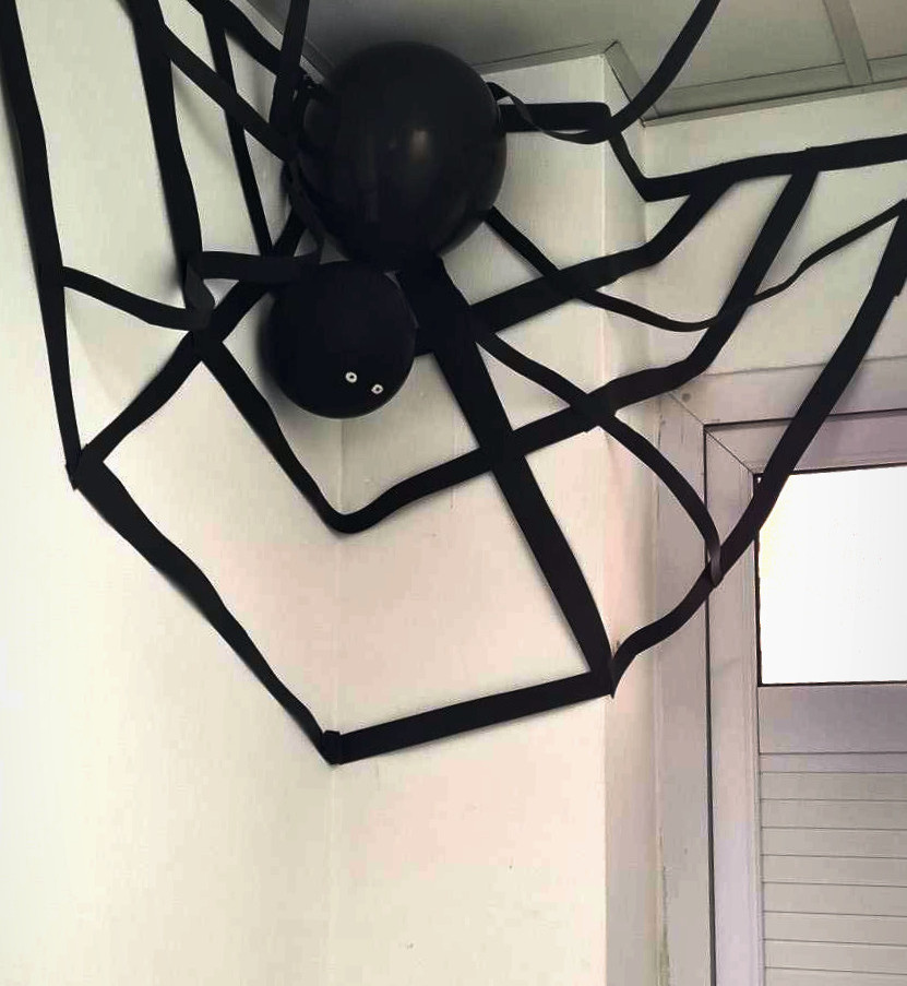 Expand's Baby Spider - Mascot of the day