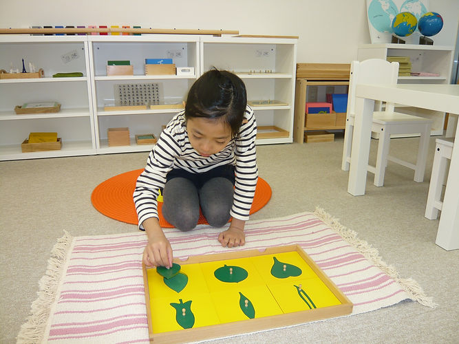 Montessori Primary Class (3-6 years old) | モンテッソーリ・プライマリクラス(3-6歳)