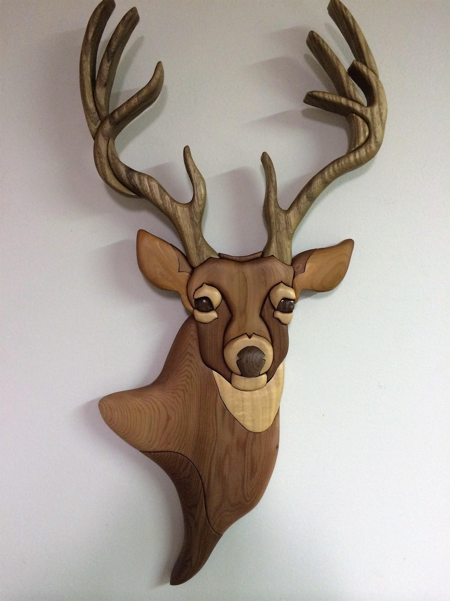 Intarsia Buck