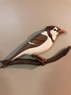 Intarsia Blue Jay