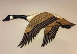 Intarsia Canadian Goose