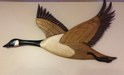 Intarsia Canadian goose wings up