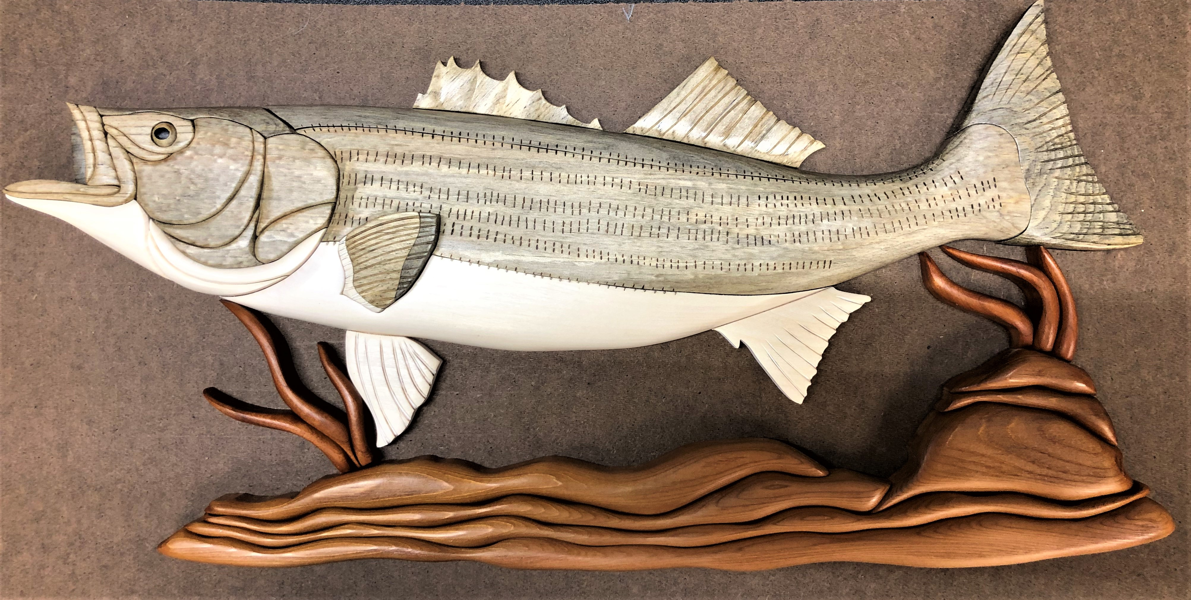 Intarsia Striped Bass