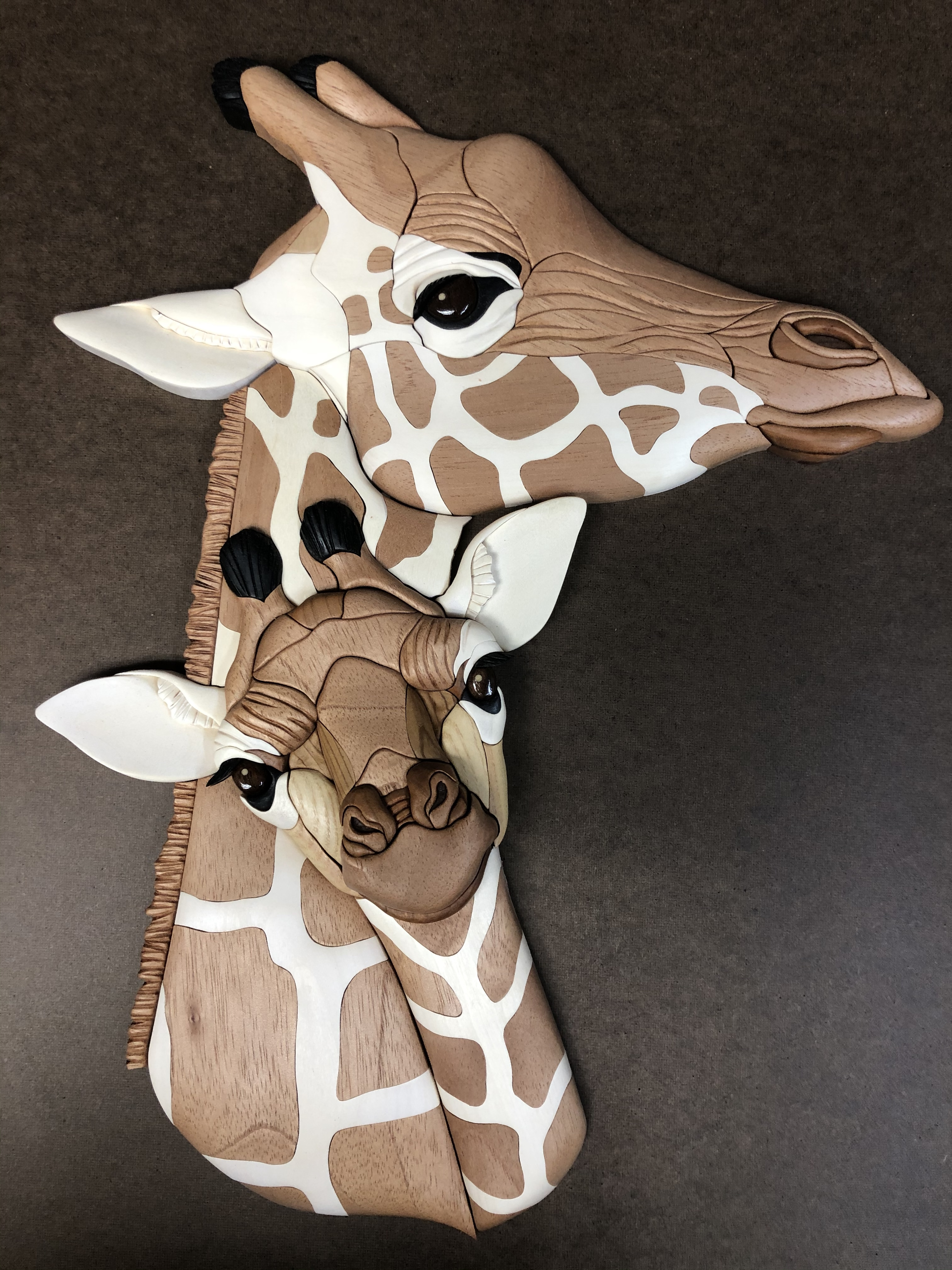 Intarsia giraffs