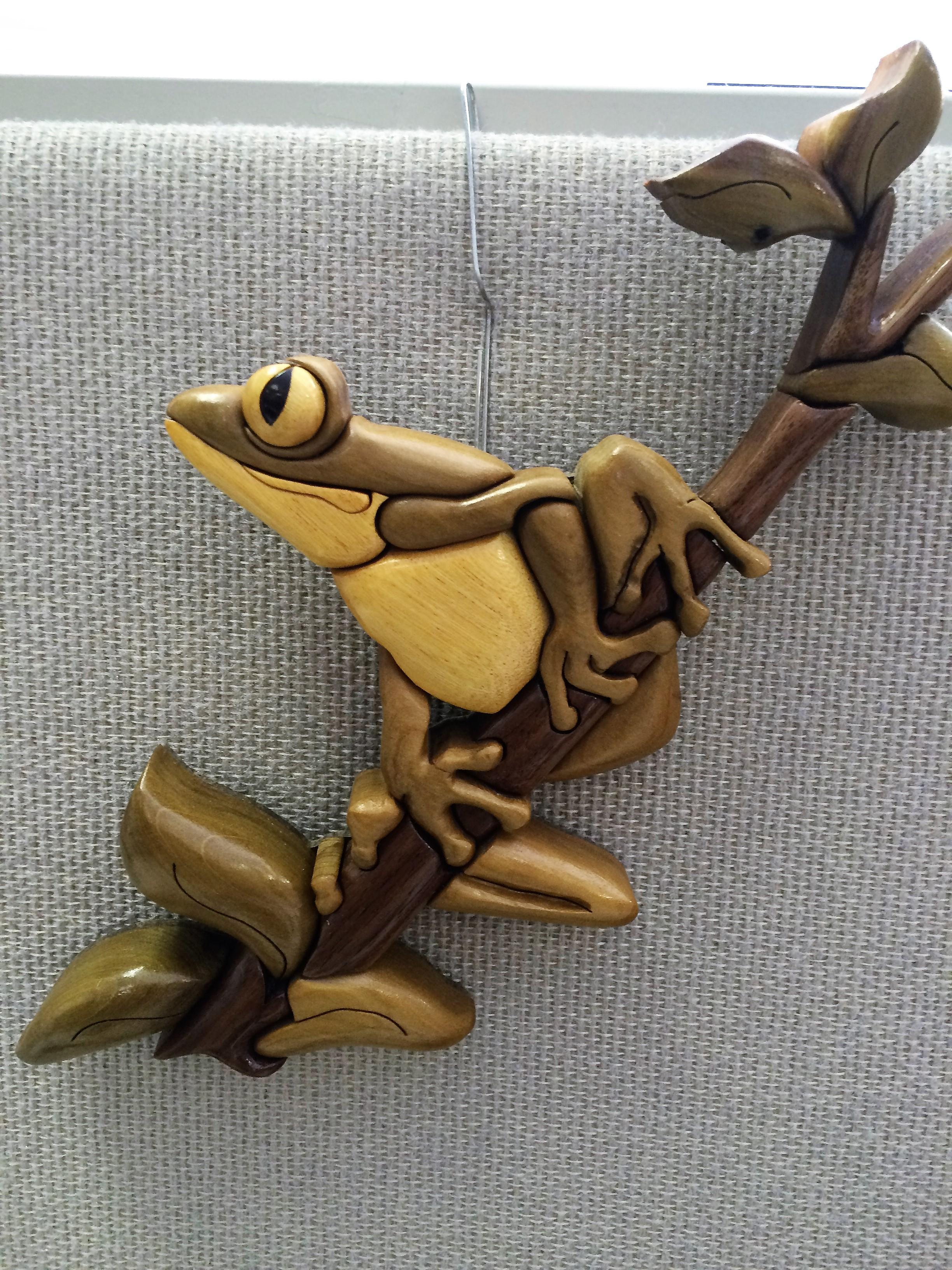 Intarsia Frog