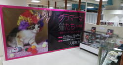 Tokyo Book Release