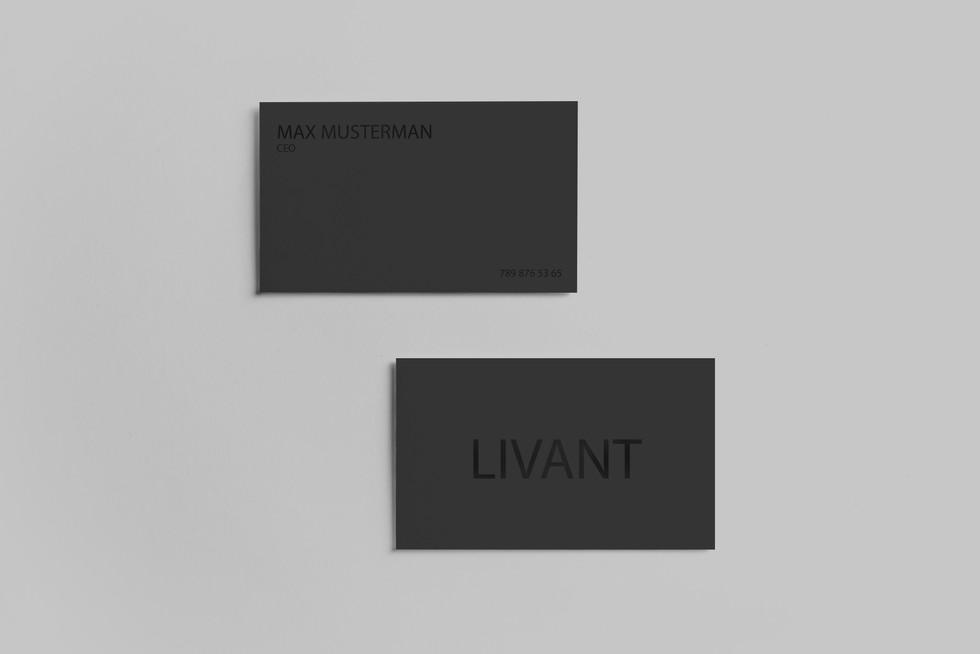Realistic-Business-Card-Presentaion-Temp
