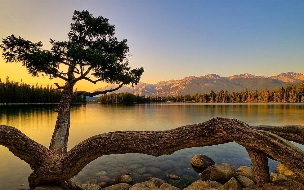 breathtaking_landscape-Nature_Wallpaper_1680x1050.jpg