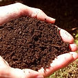 Image of handful of topsoil, Wright Landscape