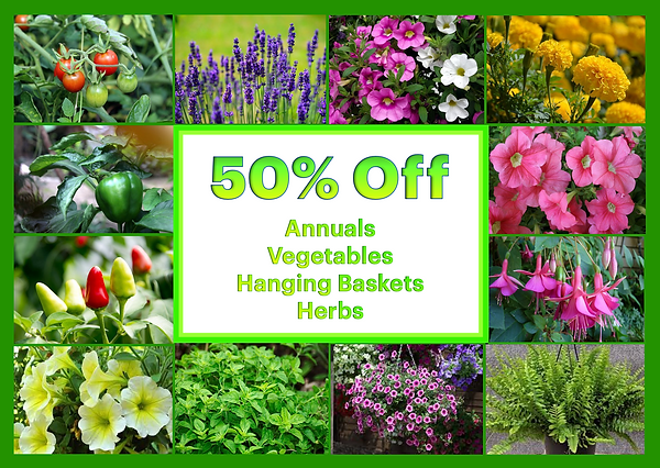 Ad 50pc off annuals vegys baskets herbs.