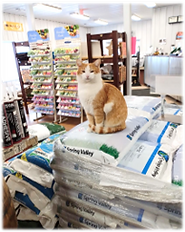 gus on grass seed bags.png