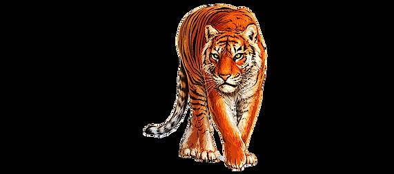 Tiger Link Logo   wix.png