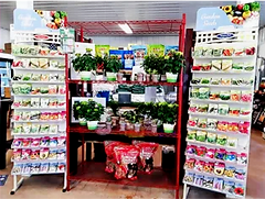 SEED%2520PACKET%2520STANDS_edited_edited