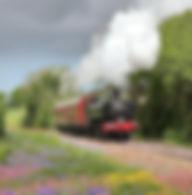 Branch Line Days - GWR Steam Auto at Bod