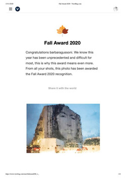 Fall Award 2020