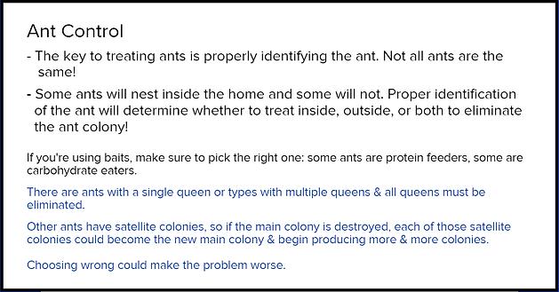 Ant control Vaughans Pest Control nc