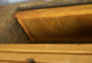 Bee stuff.jpg