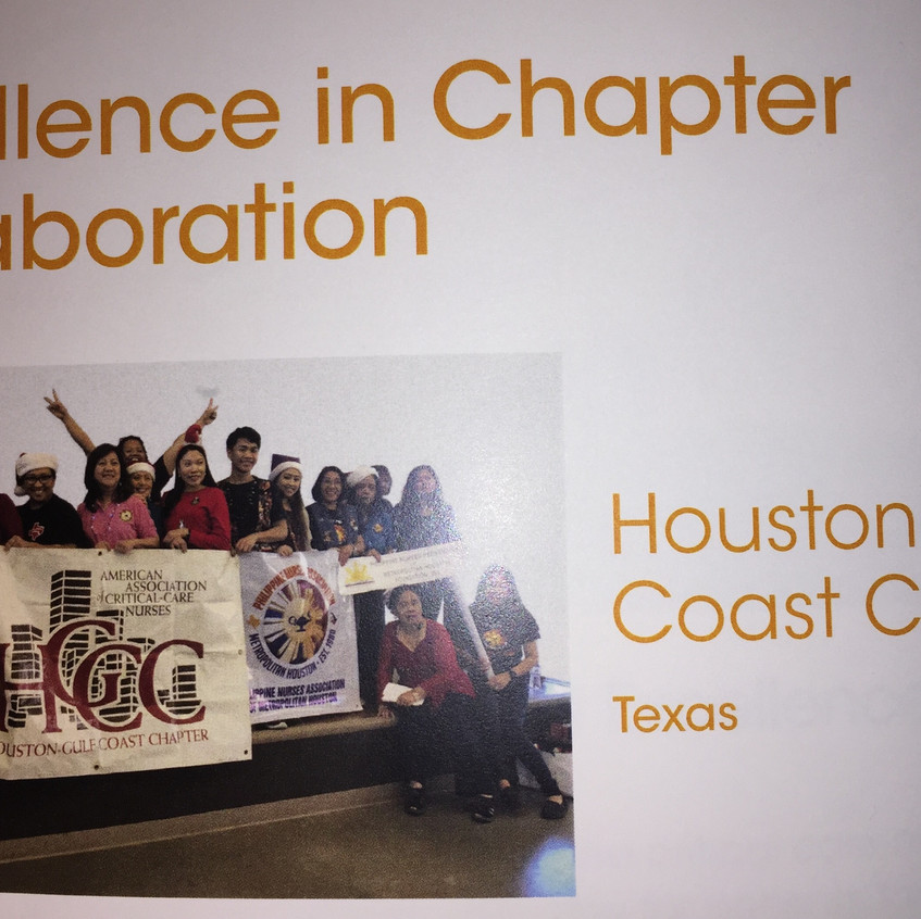 AACN Houston Circle of Excellence