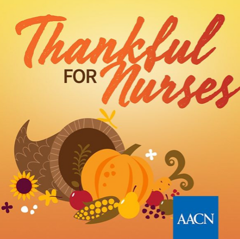 We are Thankful for Everyone this Thanksgiving Day!