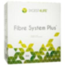 Fibre-System.jpg