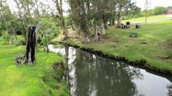 Arroyo el Pintado