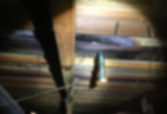 roof leak portland inspection.png