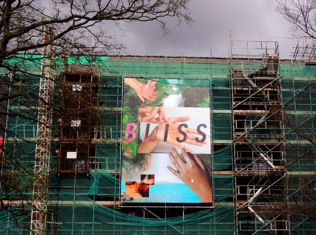 scaffolding bliss.jpg