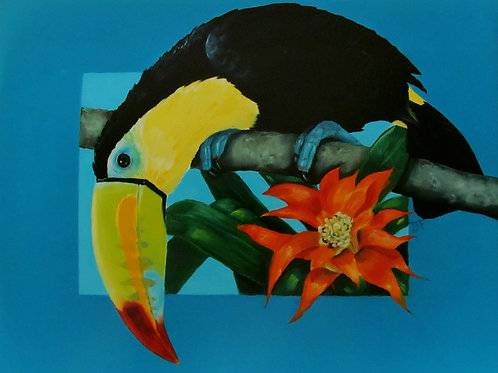 Toucan I ~ PRINT