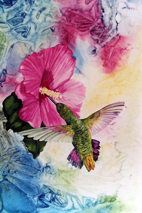 Dazzling Hummingbird ~ PRINT