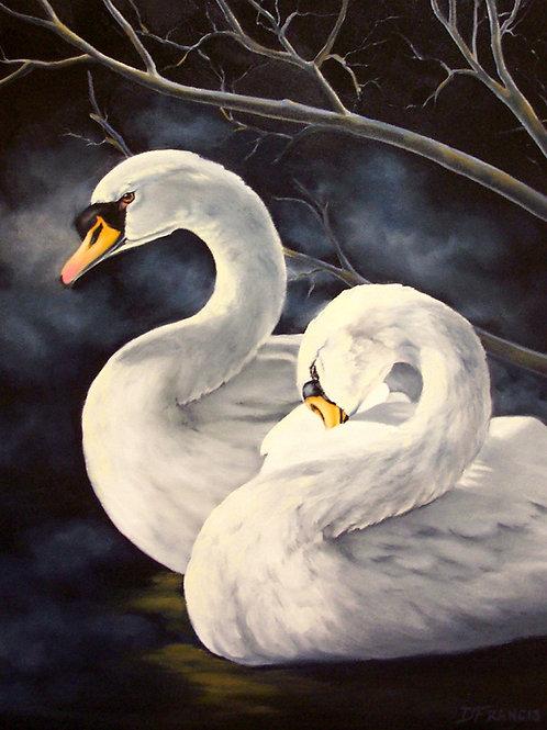 Swans ~ PRINT