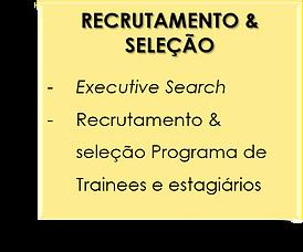 RECRUTAMENTO & SELEÇÃO.png