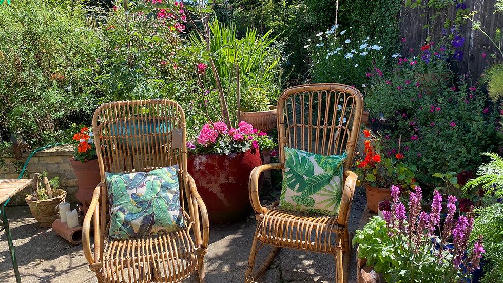 X 2 bamboo chairs 1970 Franco Albini