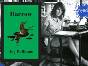 Joy Williams'tan 20 yıl sonra yeni roman