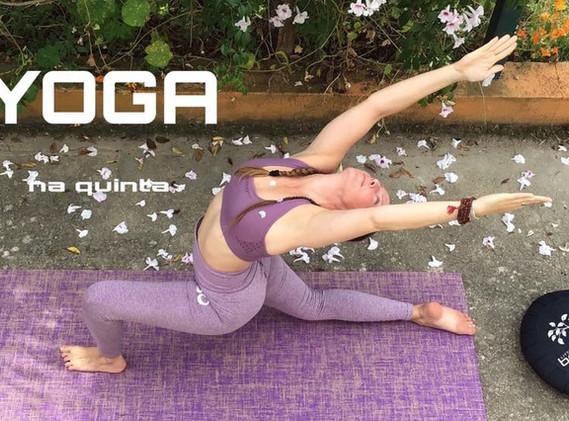 yoga na quinta chandra krama