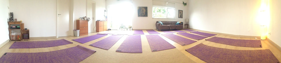 sala yoga mats capacity.JPG