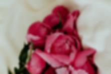 pink%20rose%20on%20white%20textile_edite