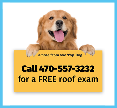 Free roof exam Top Dog Roofing