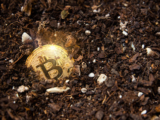 What Do Bitcoin, Gold and Land Have in Common?
