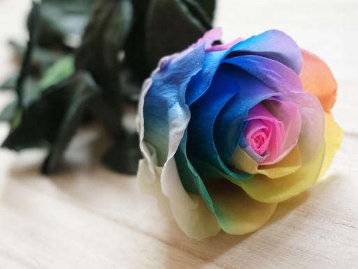 10% Off Preserved Rainbow Rose