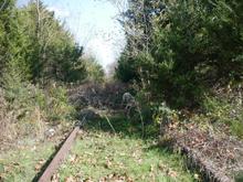 Tracks near Leslie