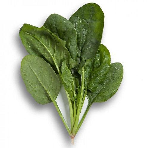 Kookaburra Spinach