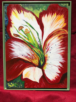 Red Lilly 12x16 Acrylic