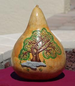gourd 7