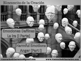 Emociones  Dañinas: La Ira (I Parte) -Harmful Emotions: Anger (Part I)