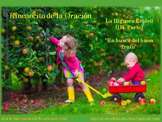 """La higuera estéril - (III Parte) """"En busca del buen fruto"""""""