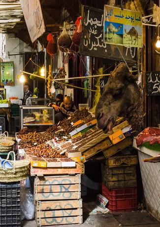 Camel meat anyone?