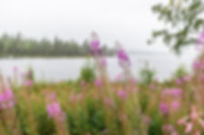 Stensjön nära Kårböle