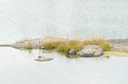 01-2020-08-07_Augustibåt-39