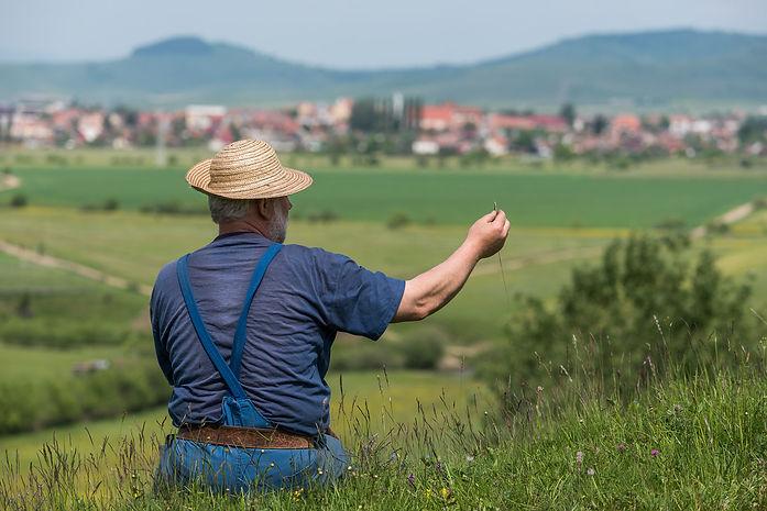 Värden Tivadar pekar ut byns marker